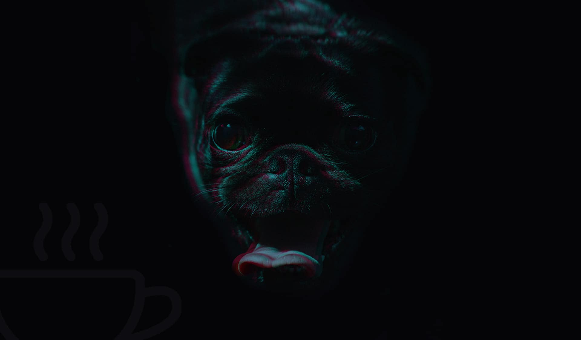 pug mug marketing header 1